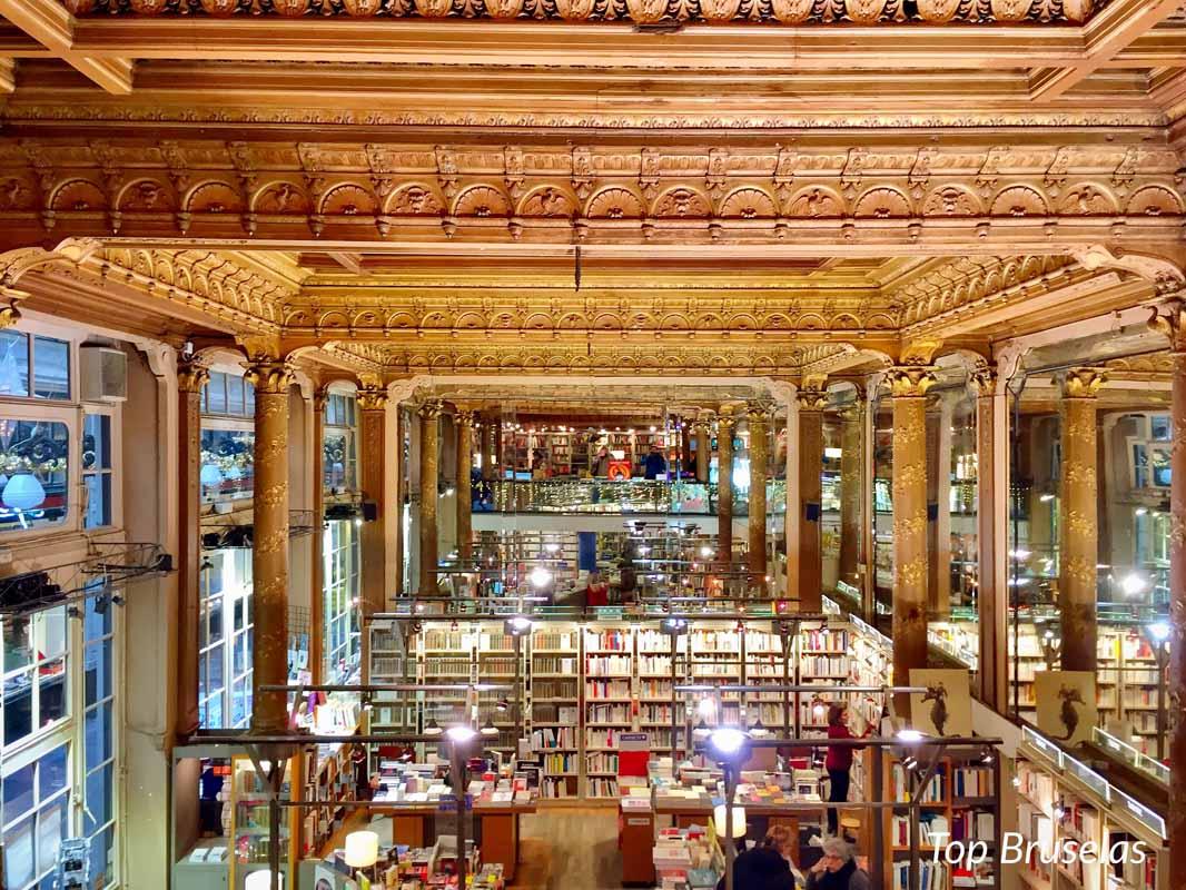Techos de la hermosa libreria TROPISMES