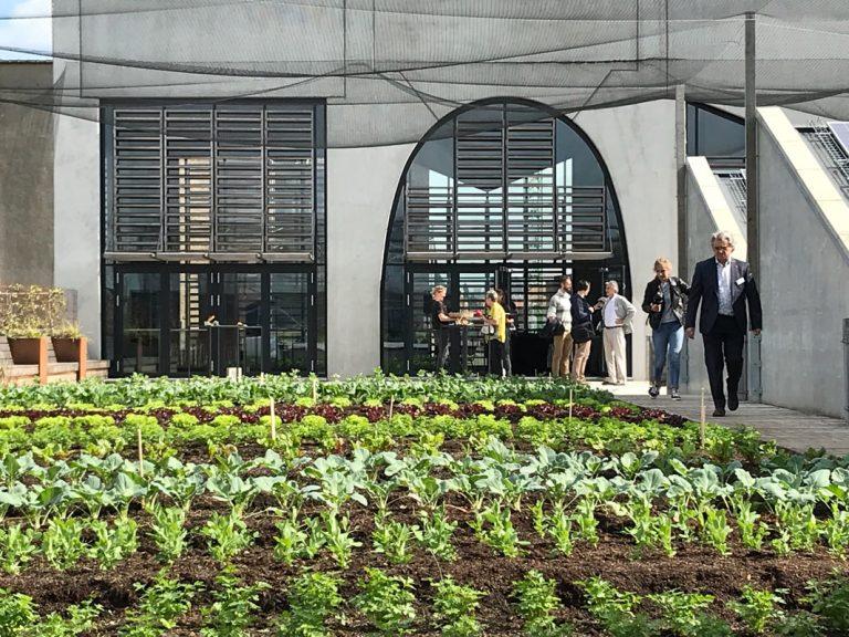 Ferme Abattoir – La granja urbana acuapónica más grande de Europa en el tejado de un mercado gourmet de Bruselas