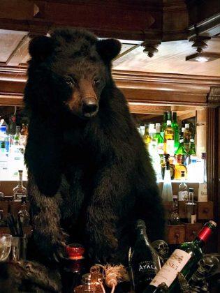La Pharmacie Anglaise oso