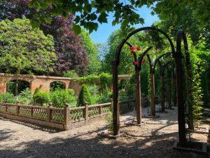 Casa Erasmo Jardin medicina
