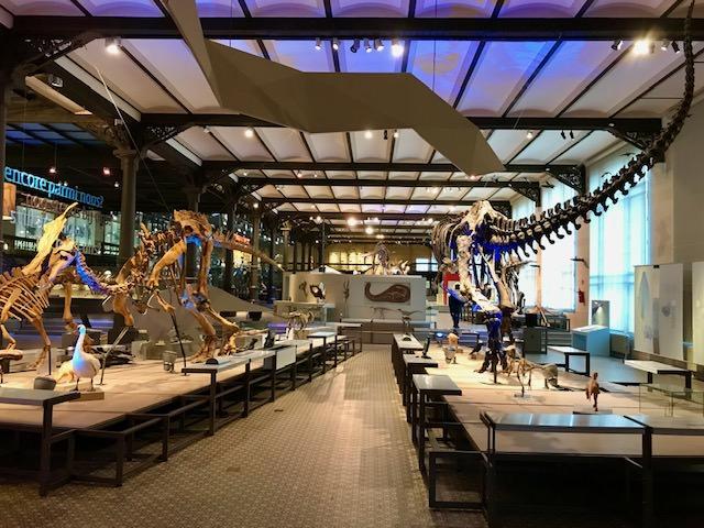 Agenda Diciembre 2020 Museo Ciencias naturales