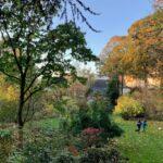 Parque Ten Bosch